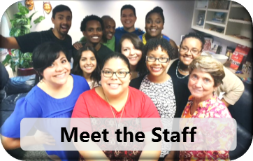 Meet the MSA Staff