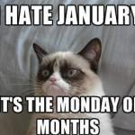 (image) Grumpy cat (text) I hate January, it's the Monday of Months